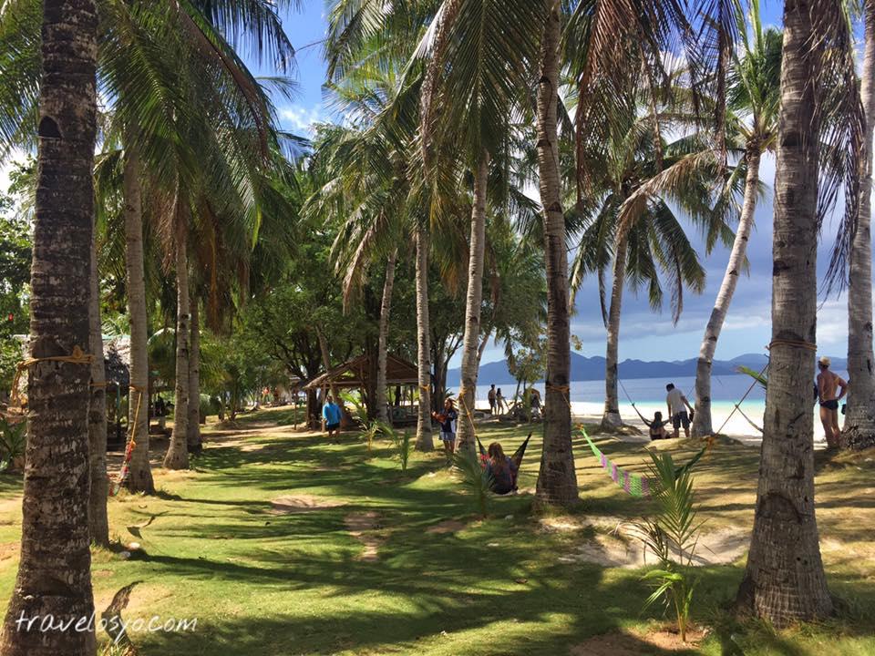 26- Banana island