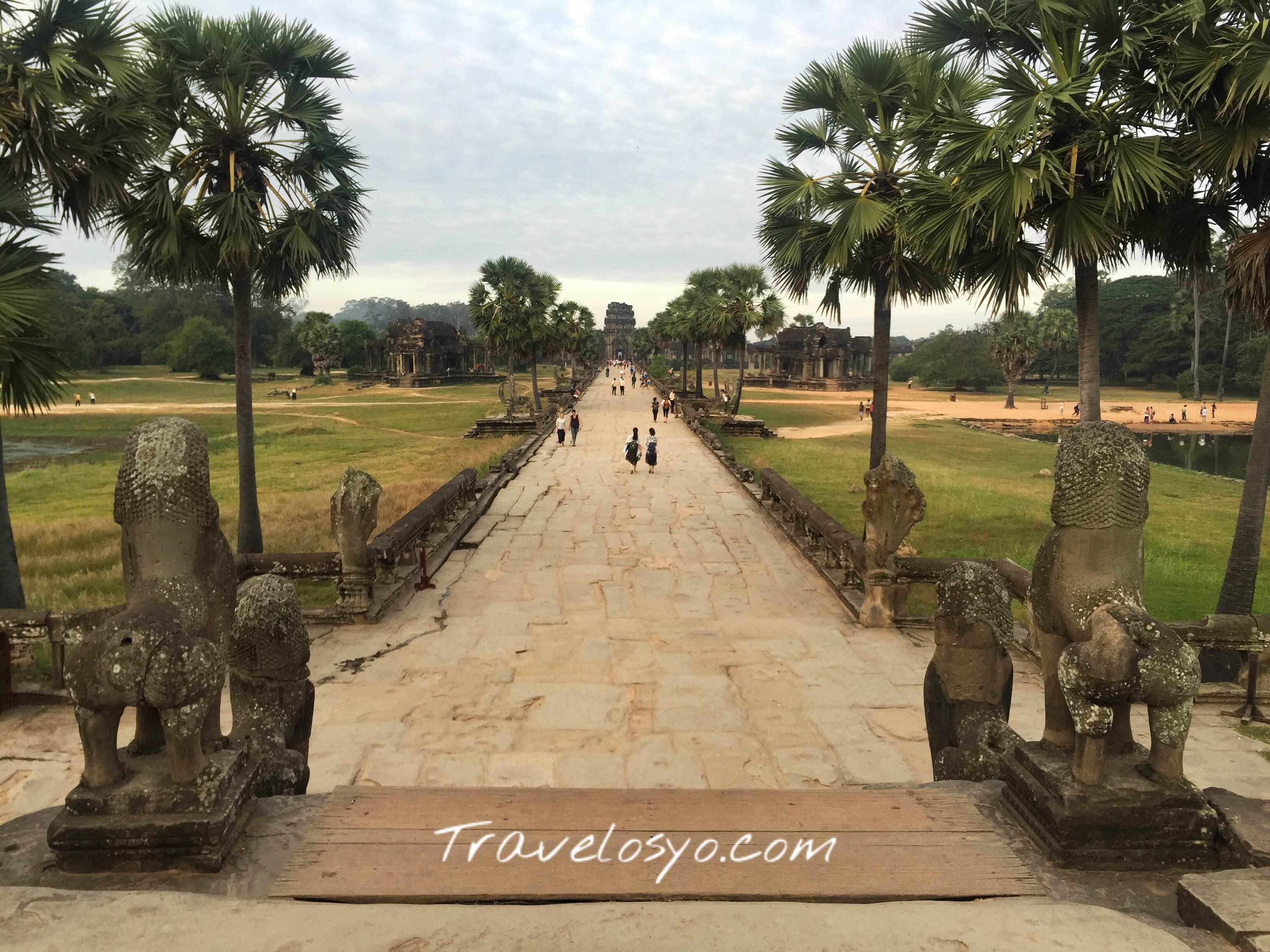 Angkor Wat Field