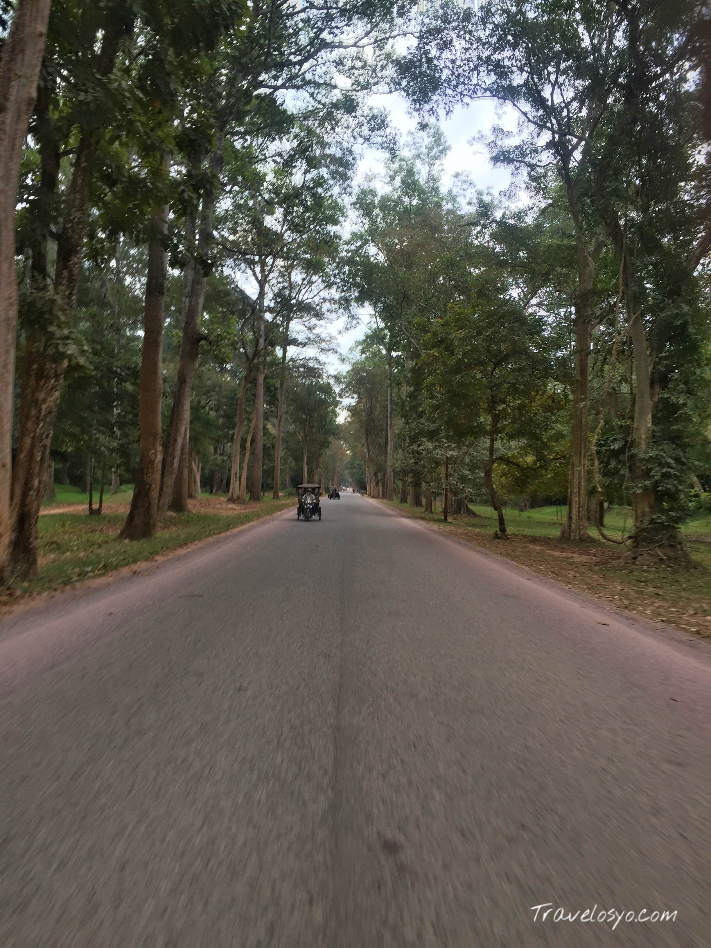 The Road of Siem Reap